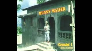 BUNNY WAILER - POWER STRUGGLERS