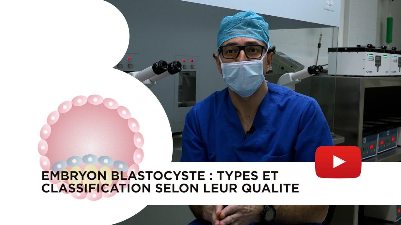 Embryon blastocyste : types et classification selon leur qualité