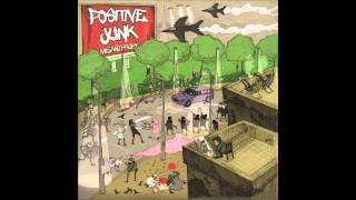 Positive Junk - The Last Three Years (Ft. Gang Control)