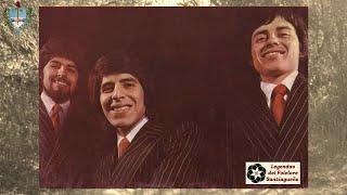 Mis sueños (zamba) -  Santiago Trio