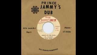 Nitty Gritty - Brown In The Ring + Dub (King Jammys Dub / Dub Store Records / DSR-LUJ7-11)