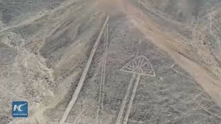 Archaeologists discover new geoglyphs in southern Peru
