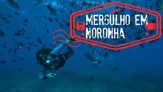 VOLTA AO MUNDO EM 80 SEGUNDOS: Mergulho em Fernando de Noronha