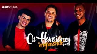 Os Hawaianos Feat MC K9 e MC Pedrinho - Aquecimento das Danadas ( Lançamento 2017 )