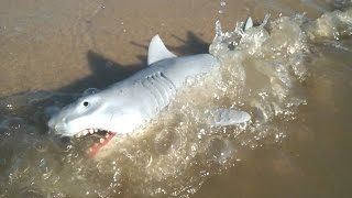 Jaws Shark Toy Review on Jersey Shore Beach - 2015 Funko Reaction