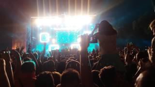 David Guetta - Titanium (Live @ Exit Festival 2016)