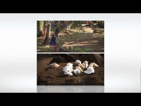 Little Corn Island & Big Corn Island, Nicaragua -Display.m4v
