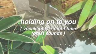Holding On To You (vocals only + night time forest sounds)