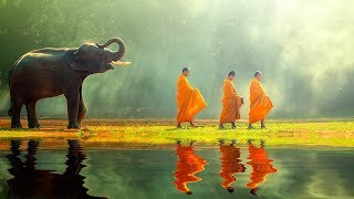Tibetan Meditation Music 24/7, Relaxing Music, Healing, Sleep, Chakra, Yoga, Zen, Meditation, Study