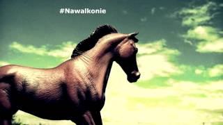 Gimpson - #Nawalkonie