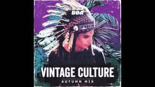 Dido - Thank You (Vintage Culture, Lazy Bear Remix)