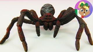 Lo scherzo perfetto per chi ODIA i ragni! (tipo me :()