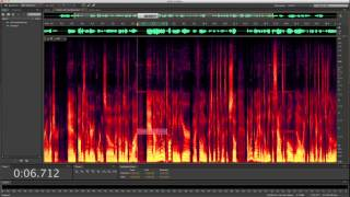 Adobe Audition - Spectral Editing - Removing a Cell Phone Ring From a Recording