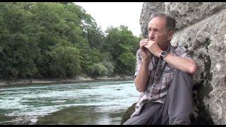 Yellow - River     Harmonica by Harproli     Here I grew up!