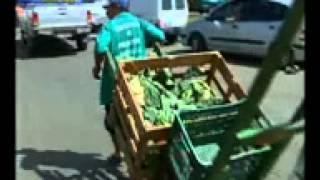 Dia Mundial da Alimentação - 2013