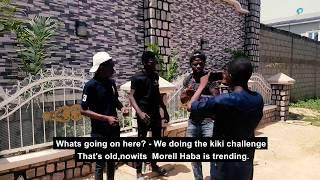 Haba Morell | bushkiddo