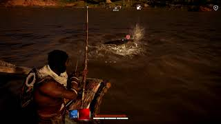 assassins creed origins hippo vs crocodile