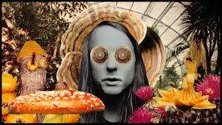 """Andy Shauf - """"The Magician"""""""