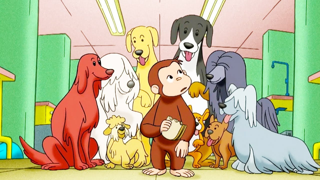 9. Dog Counter