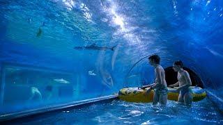 Insane Shark Water Slide at Aquapark Reda