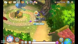 Animal Jam Will u marry me?