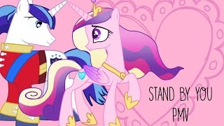 Stand by You PMV
