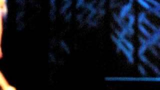 Hirv Jelena - LeNnYGolD  - Wish you were here