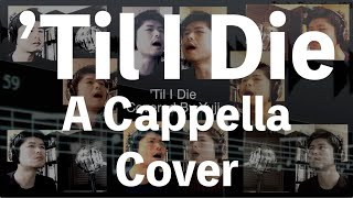 "The Beach Boys - 'Til I Die - ""A Cappella"" - COVER"