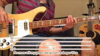 The Rolling Stones - Paint it Black (bass cover with tabs and lyrics)