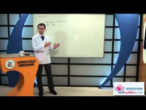 Açık Lise Biyoloji-1 Görüntülü Eğitim Seti Konu Anlatımı Demosu