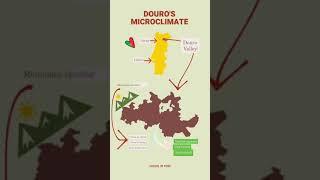 Douro's microclimate (animation)