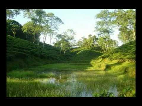 VISIT BANGLADESH.mpg