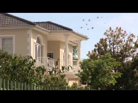 Greeff Properties introduces the Southern Suburbs of Cape Town, Western Cape, South Africa