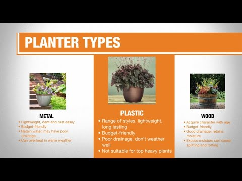 Best Flower Pots for Your Yard