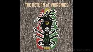 Vibronics ft. Soom T - Don't Follow Babylon