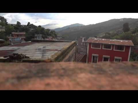 Ant in Terrace, Tansen City Nepal – Part 1