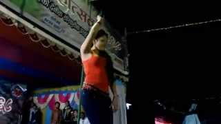 Indira Joshi Singing and Dancing Hips Dont Lie Shakira)
