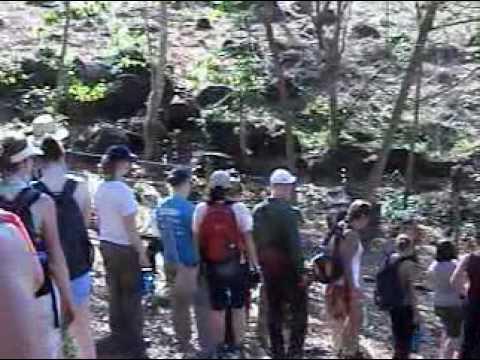 BioCurso: Nicaragua Parte