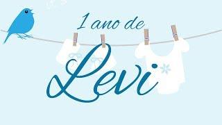 Levi 1 ano   (Promete - Ana Vilela)