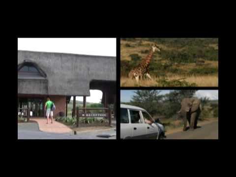 Hluhluwe Imfolozi Game Reserve – KwaZulu Natal, South Africa
