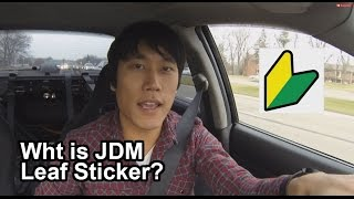 Do You Know The Meaning of JDM Leaf Sticker? - Vlog #2