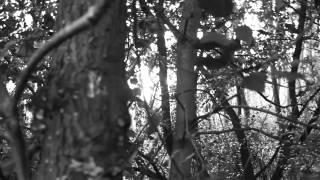 Vicktor Taiwo - Digital Kids (Final A2 Media Music Video)