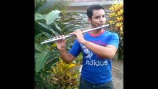 Concerning Hobbits - O senhor dos aneis (Flauta)