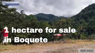 Sale of 1 hectare with excellent views and weather in Boquete. Prestige Panama Realty. 6981.5000