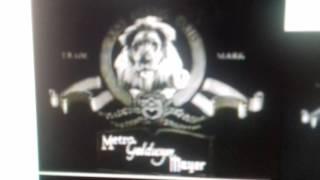 Il Re  Leone 2 : Il regno  di  Simba