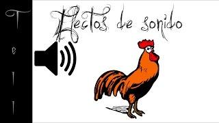 Canto del gallo al amanecer | Efecto de sonido