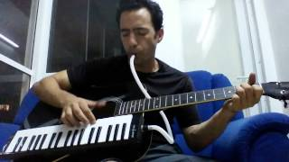 Matisyahu - One Day melodica & guitar cover