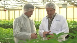 Zebra Technologies - Aphria Inc. Success Story