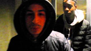 Freestyle deter timal