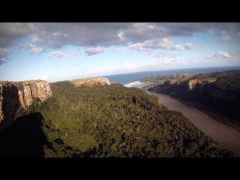 Animal Ocean Sardine Run Teaser with Getaway
